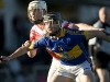 ulster-club-shc-final-2010_009