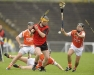 Ulster SHC 2010 - Armagh v Down