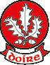Derry GAA Crest