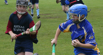 Year 9 'C' Hurling Blitz