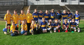 U10 Hurling Go Games Blitz