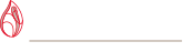 Irish Blood Transfusion Service